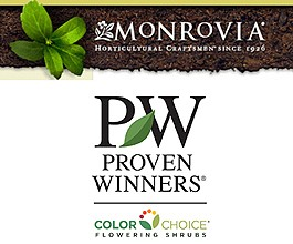 Monrovia, Proven Winners Color Choice team to bring new shrubs to independent garden centers