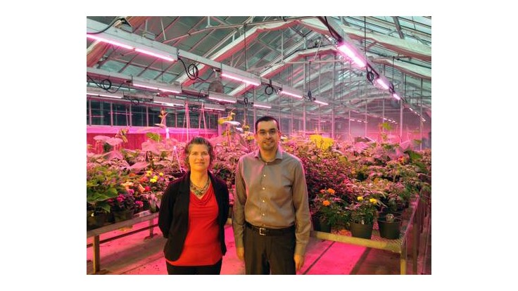 Michigan State University partners with Philips Lighting to modernize greenhouse supplemental lighting