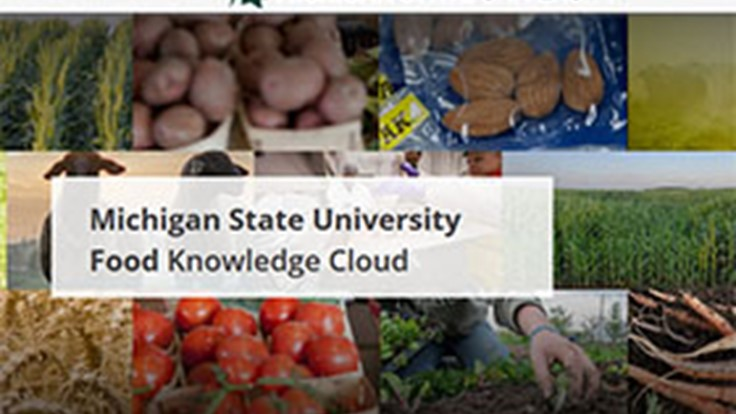 MSU to Expand Global Reach with Food Channel Debut