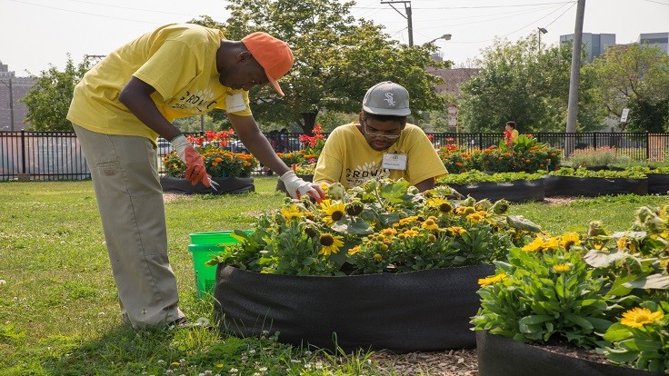 Interesting Garden Grants National Bureau Accepting Applications For Therapeutic Y And Inspiration Decorating