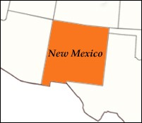 Fifth Case Of Hantavirus Confirmed In New Mexico