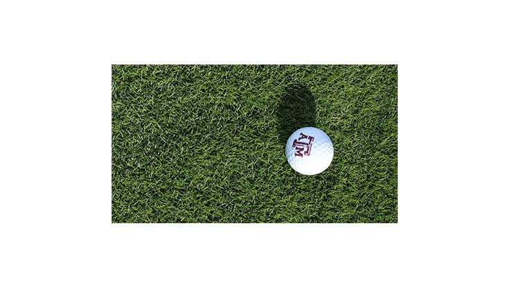 New zoysiagrass variety offers potential for increased ball roll on greens
