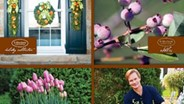 P. Allen Smith launches 1st product lines