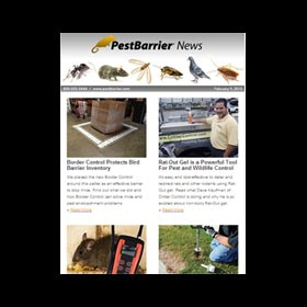 Pest Barrier Launches Pest Bytes E-newsletter