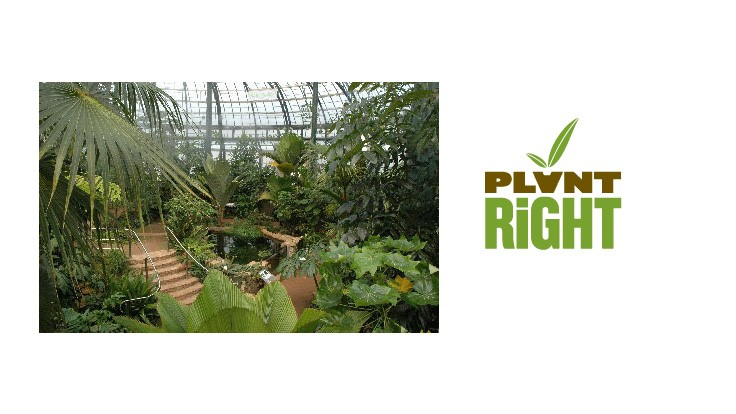 The Huntington to host PlantRight workshop