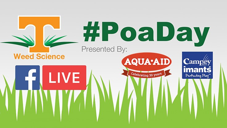 Aqua Aid partnering with University of Tennessee Turfgrass on #PoaDay