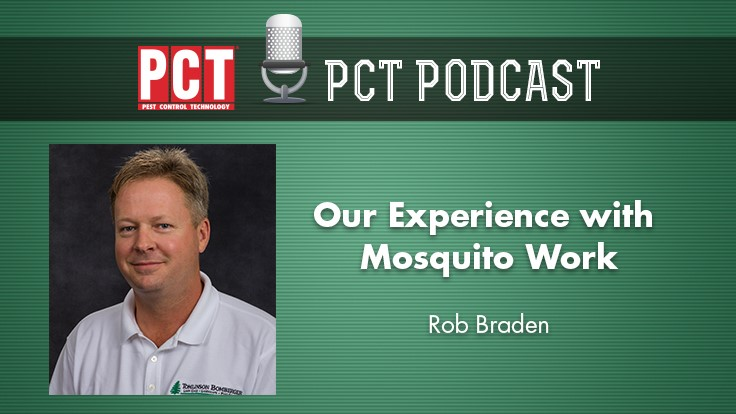 Podcast: Our Experience with Mosquito Work