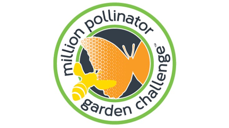 Million Pollinator Garden Challenge brings attention to importance of pollinator activity