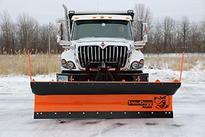 SnowDogg Municipal Series Reversible Snow Plows