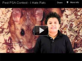 Winners Named in National PSA Contest