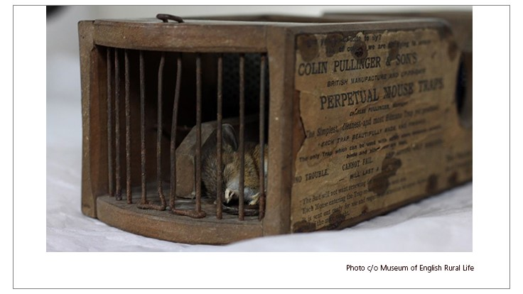 Museum's 150-Year-Old Mousetrap Still Catching Rodents