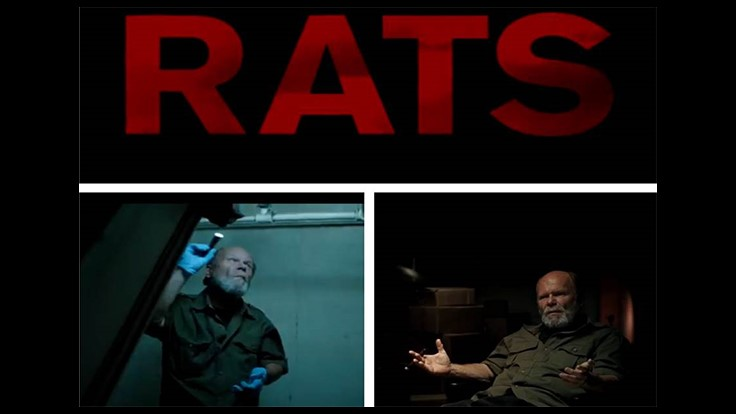Colony's Ed Sheehan in New Documentary 'RATS'