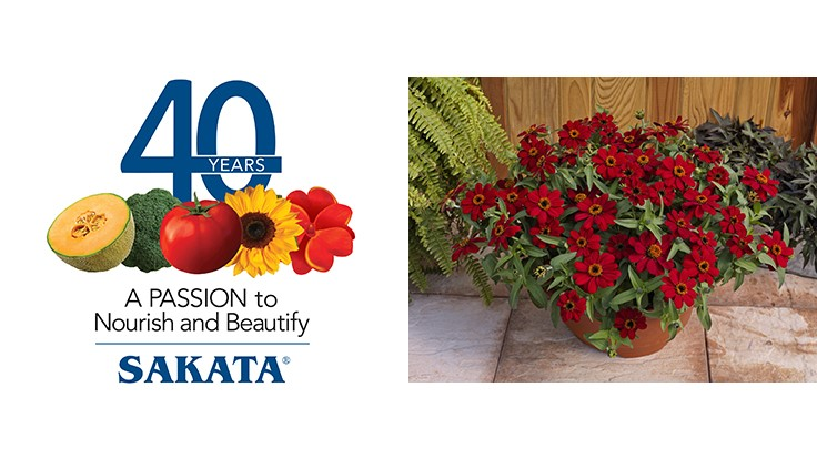 Sakata Seed America announces 40th anniversary in North America
