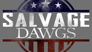 DIY series Salvage Dawgs features Virginia-based salvage company
