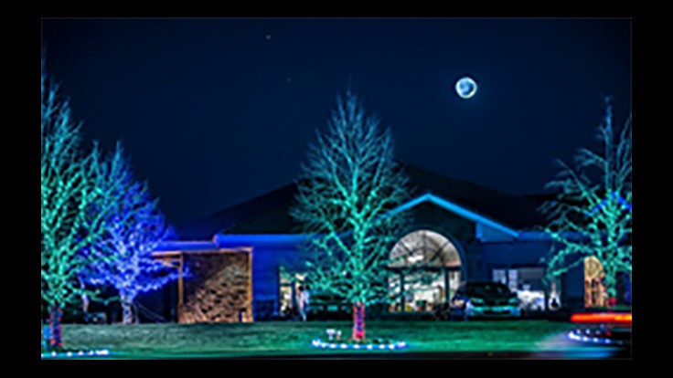 Senske to Hold Annual Charity Holiday Light Show and Open House