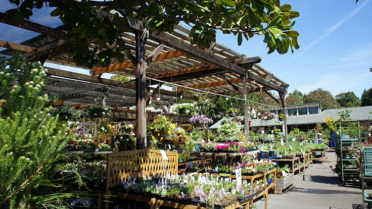 Sloat Garden Center to acquire Navlets Garden Centers Garden