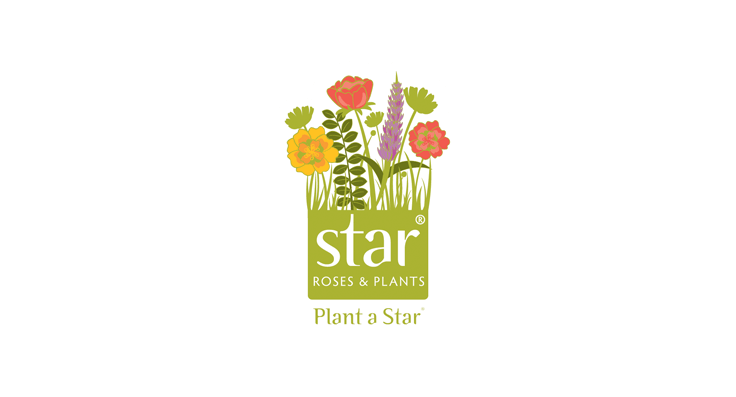 Star Roses and Plants wins Silver Medal of Achievement at 2017 GWA Media Awards