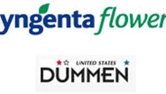 Syngenta enters into license agreement with Dummen