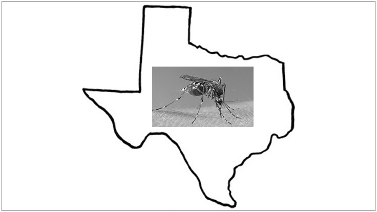 Zika Surfaces in Texas