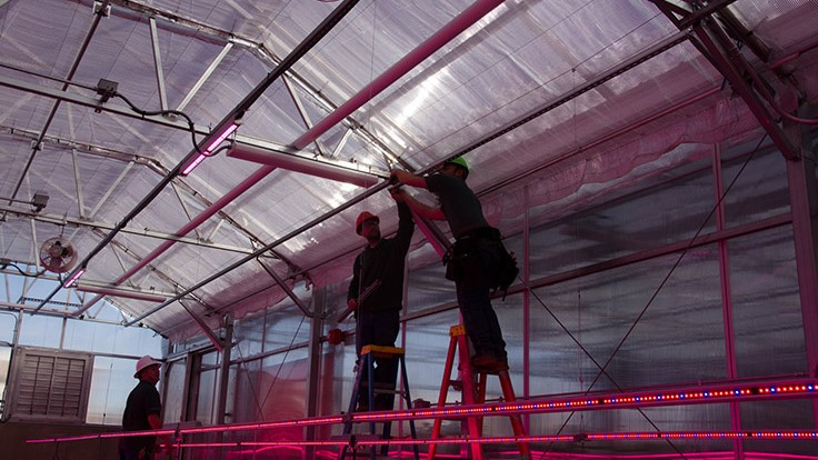 Philips Lighting And Colorado State University Partner Up To