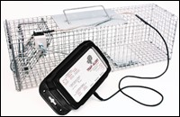 Trap-Alert Lets PMPs Monitor Traps Remotely