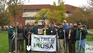 PGMS plants centennial tree