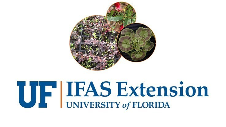 UF/IFAS to offer Greenhouse Training Online course