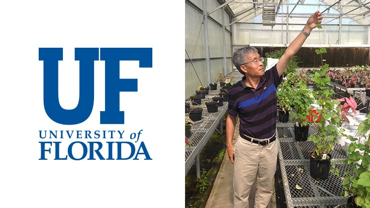 UF/IFAS allocates funding for hop cultivation research
