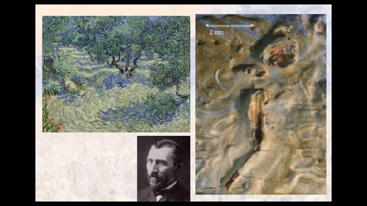 Bug Found Embedded in van Gogh Masterpiece