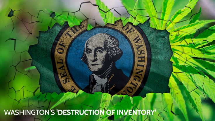 WA's 'Destruction of Inventory' Penalty Is 'Abhorrent,' Says Cannabis Grower