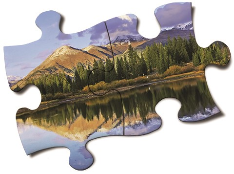 The water puzzle