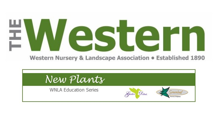 WNLA new plants webinar set for Dec. 7