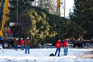 Wyoming company donates services to U.S. Capitol Christmas tree