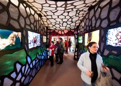 Terminix Launches Multisensory Exhibit Devoted to Bugs