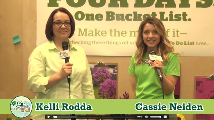 Cultivate'16 Video Show Daily: Day 3 [video]