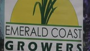 New England Grows Show Coverage: Emerald Coast Growers
