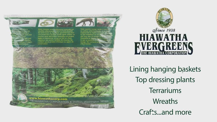 Sponsored: Retail Product Showcase: Hiawatha Evergreens moss [video]