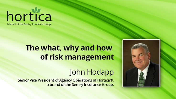 The what, why and how of risk management