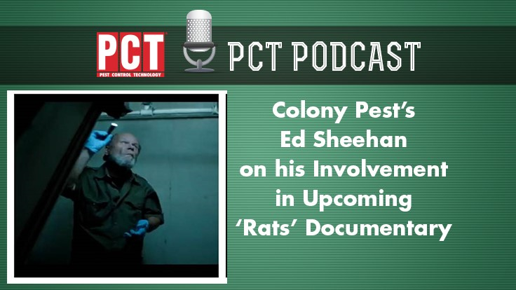 Colony Pest's Ed Sheehan on His Involvement in 'Rats' Documentary