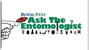 Royal Pest's 'Ask the Entomologist' Video