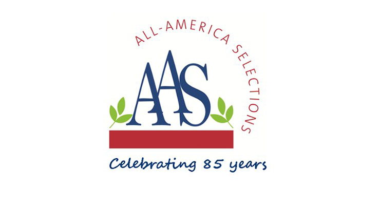 All-America Selections appoints new treasurer