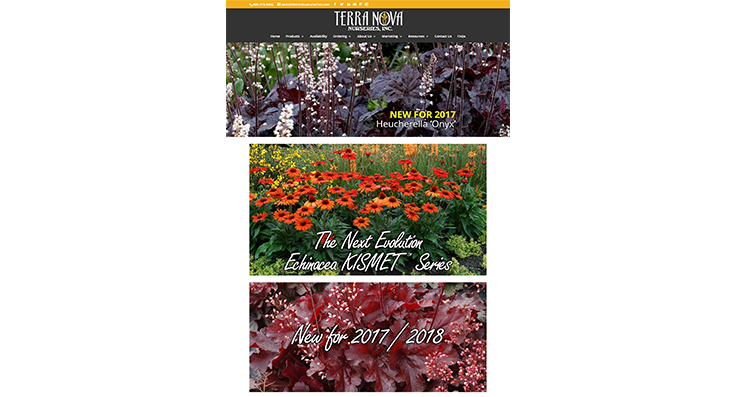 Terra Nova Nurseries launches new website