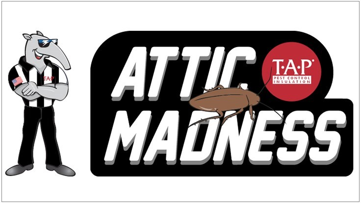 PCI Announces Attic Madness Photo Contest