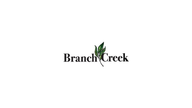 SynaTek Solutions launches Branch Creek
