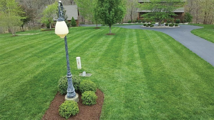 Analyze the needs of customers' lawns