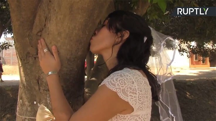 Women marry trees to protect them