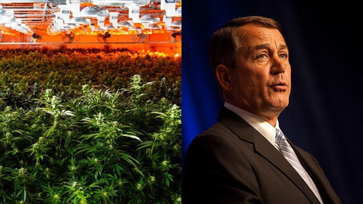 Introducing Acreage Holdings, the Quietly Growing Cannabis Corporation Joining Forces with John Boehner