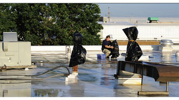 McCloud Services Provides Expertise on Fumigation Practices