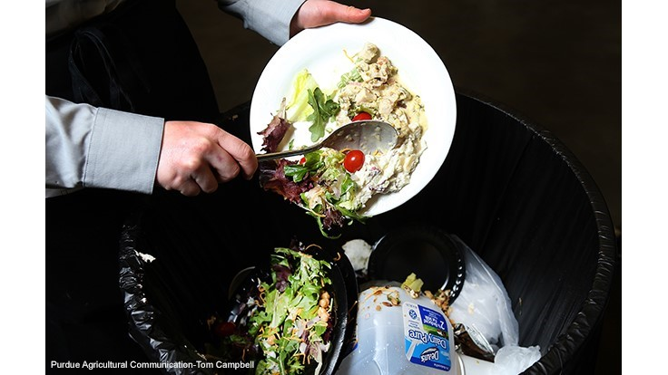 Wasting Food May Be Safe, Reasonable Decision for Some