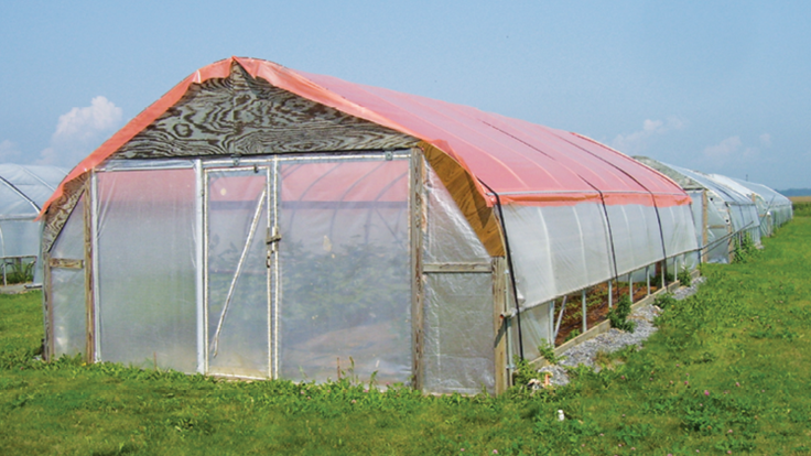 How to Improve Greenhouse Shading